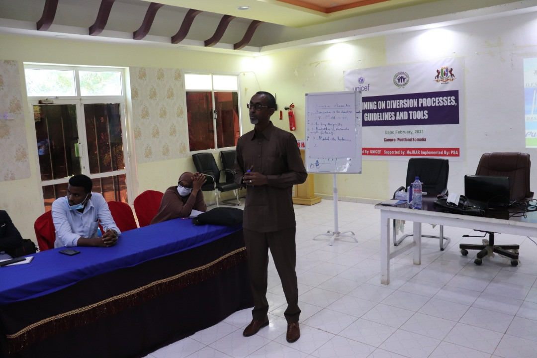 DIVERSION project (reintegration of children in conflict with the law) Training